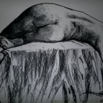 untitled nude 2. Charcoal on paper. 43 cm x 59 cm. 2013